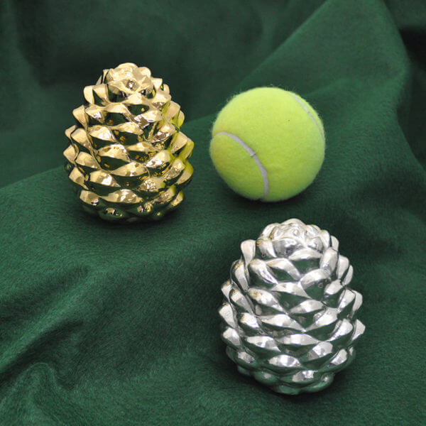 Pine cones and tennis ballWP