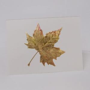 Paula Skene Designs gold foil embossed maple leaf on ecru note card