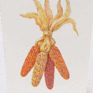 "Paula Skene Designs native corn ""Happy Thanksgiving"" card"