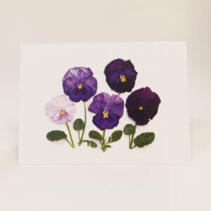 Bottle Branch® Purple Pansies note card